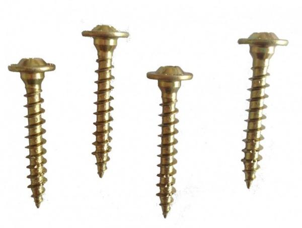 Schrauben für Bodenhülsen 9x9 cm
